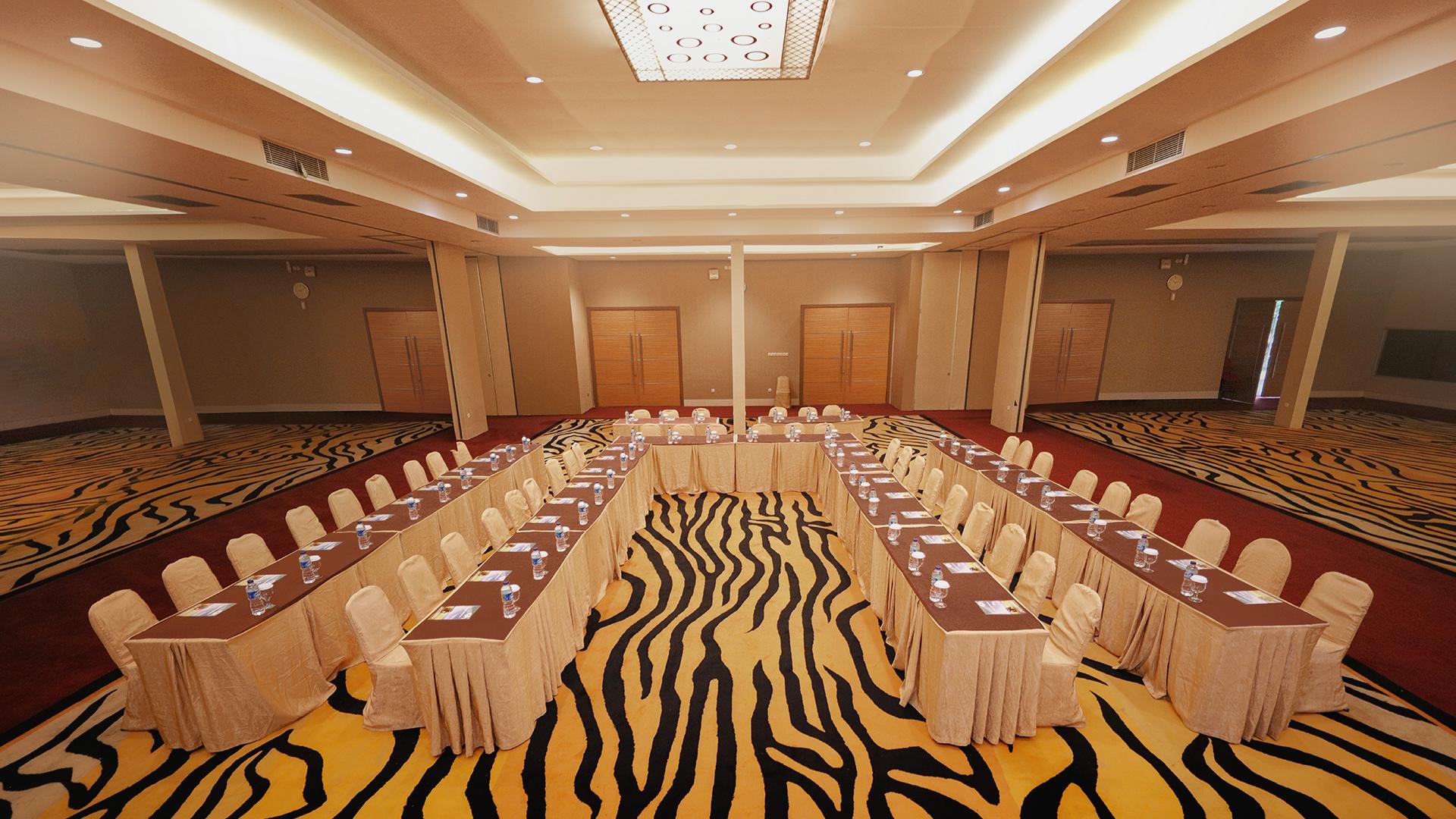 Tiger Ballroom (5)